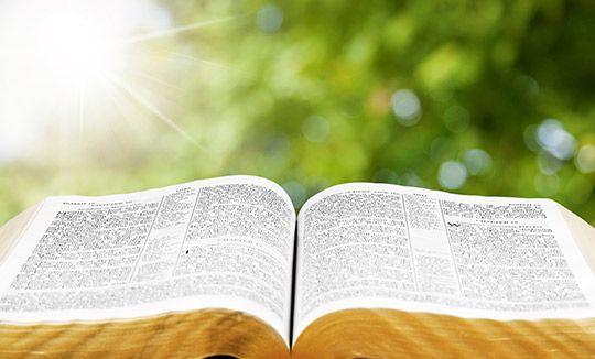 libro evangelio luz